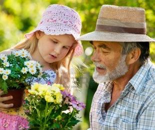 внучки и дедуля